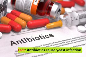 Antibiotics cause yeast infection