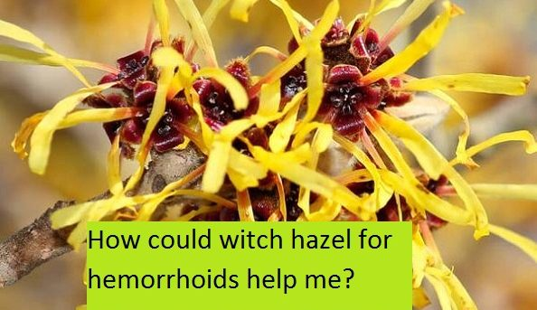 How could witch hazel for hemorrhoids help me